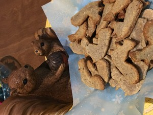 Squirrel cookies