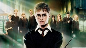 harry potter and the order of phoenix پیپر وال 1366x768