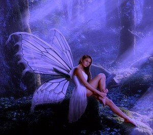 Fairy Beautiful
