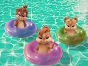 Pool Chipettes