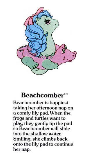 Beachcomber Fact File