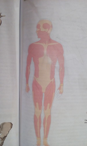 Colossal titan on biology book...
