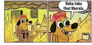 Trump supporters rn