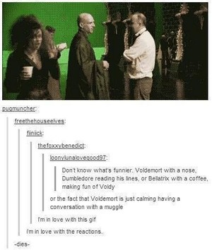 Harry Potter- Tumblr