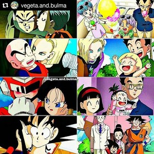 Dragon Ball Family