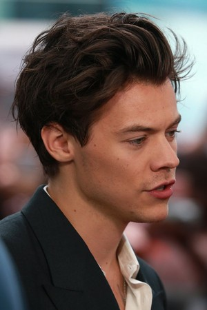 Harry at the Dunkirk Premiere