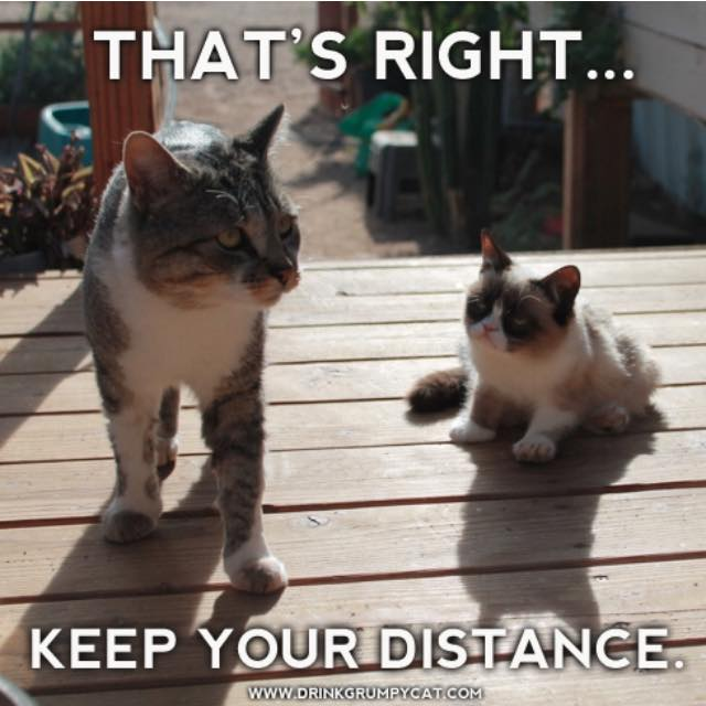 That's right... KEEP YOUR DISTANCE.