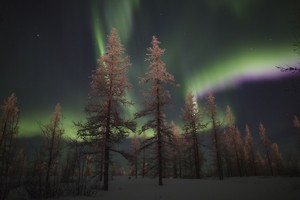 Northern Lights, Russia