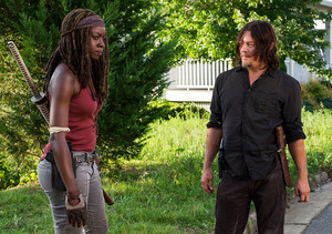 8x08 ~ How It's Gotta Be ~ Daryl and Michonne