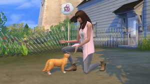 The Sims 4: 猫 and 狗