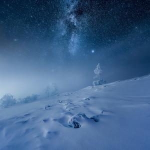 mikko lagerstedt frozen world