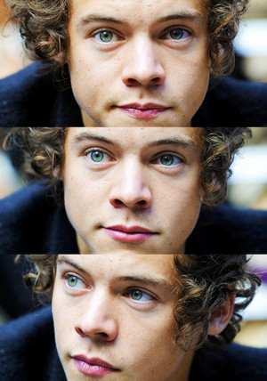 Harry is beautiful