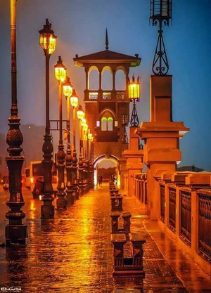 WINTER IN ALEXANDRIA EGYPT
