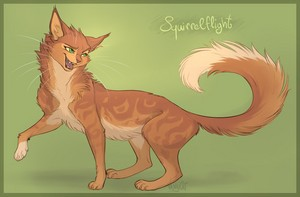 warrior mèo squirrelflight bởi vanycat dauc3ru png