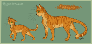 warriors cats   fireheart by vanycat d9hz17t