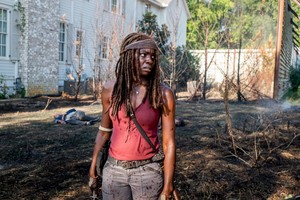 8x10 ~ The Nawawala and the Plunderers ~ Michonne