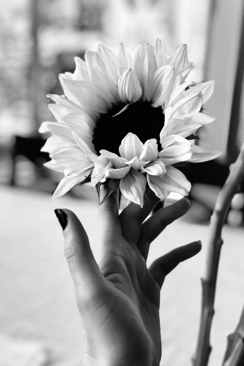 Aesthetic Bunga Ari Rachel Foto 41256293 Fanpop