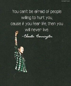 chester ♡