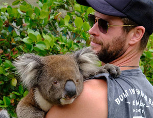 Chris holding a koala