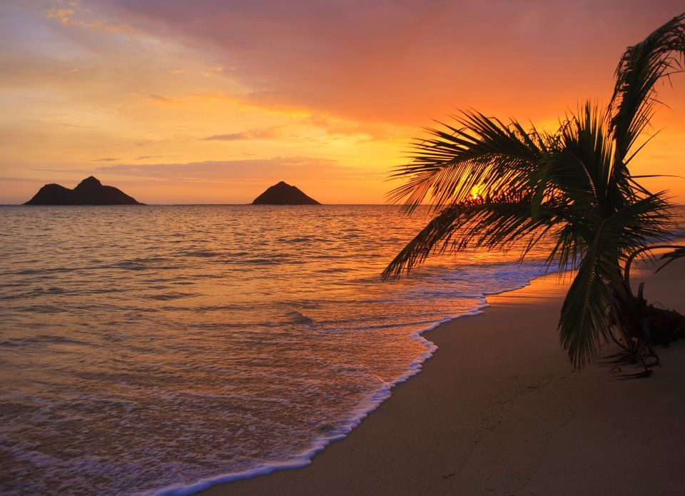 Sunset Beach Oahu Hawaii Travel Photo 41368112 Fanpop
