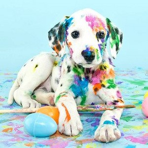 puppies in paint