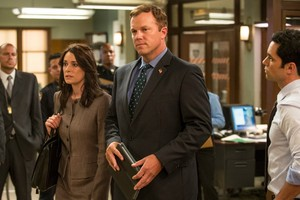 Adam Baldwin as Captain Steven Harris in Law and Order: Special Victims Unit