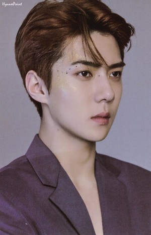 2019 exo Season's Greetings