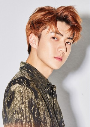 SEHUN 'LOVE SHOT '