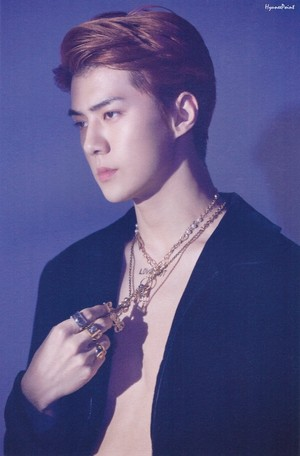 SEHUN LOVE SHOT