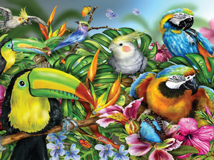 Tropical Colorful Birds