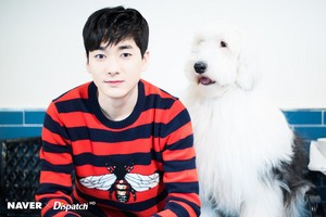 Aron photoshoot with dogs