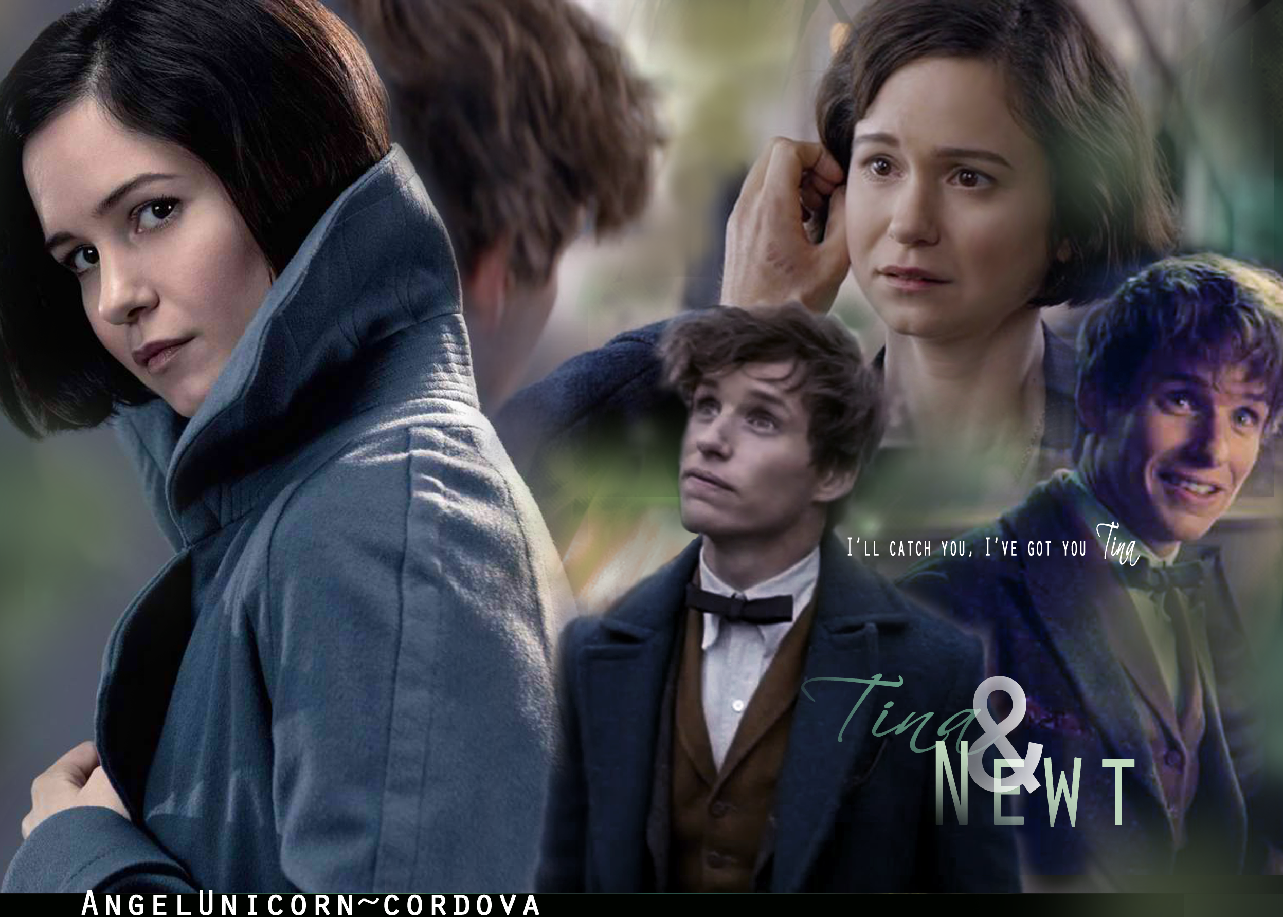 Newt Tina Wallpaper Fantastic Beasts And Where To Find Them