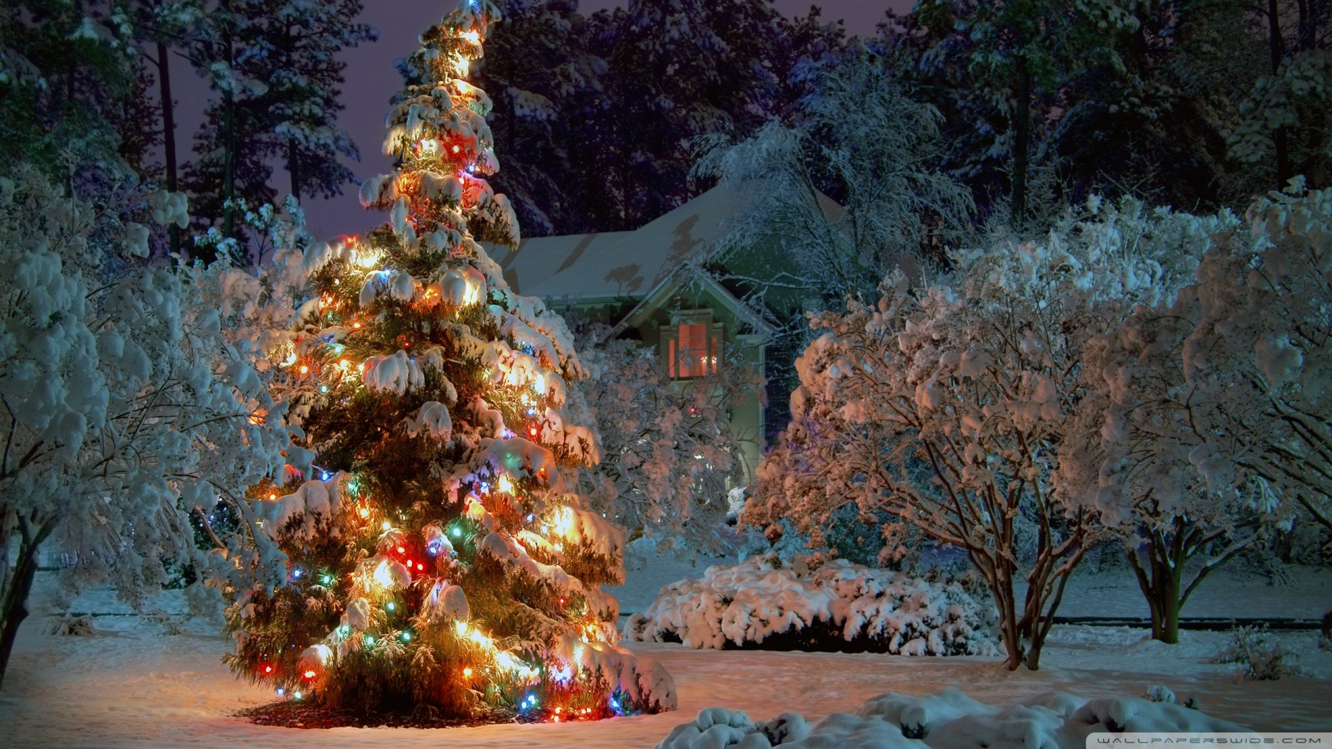 christmas at night wallpaper 1920x1080