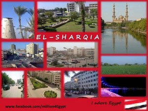 EL SHARQIA IN EGYPT