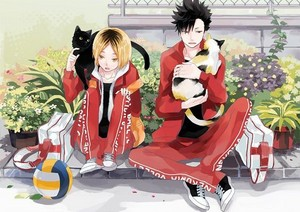 Kenma and Kuroo