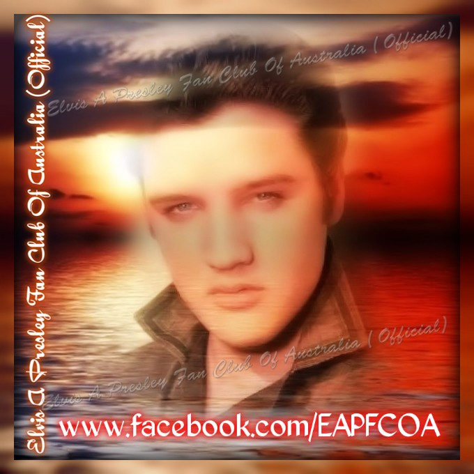Elvis fan creation