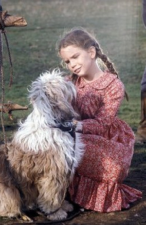 Laura Ingalls (Melissa Gilbert) Red print prairie dress -Costume 由 Richalene Kelsay