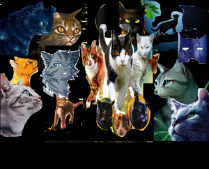 My Warrior Cats Poster[made this myself!]