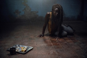 10x13 ~ What We Become ~ Michonne