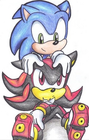 Sonic and Shadow 💙 ❤️