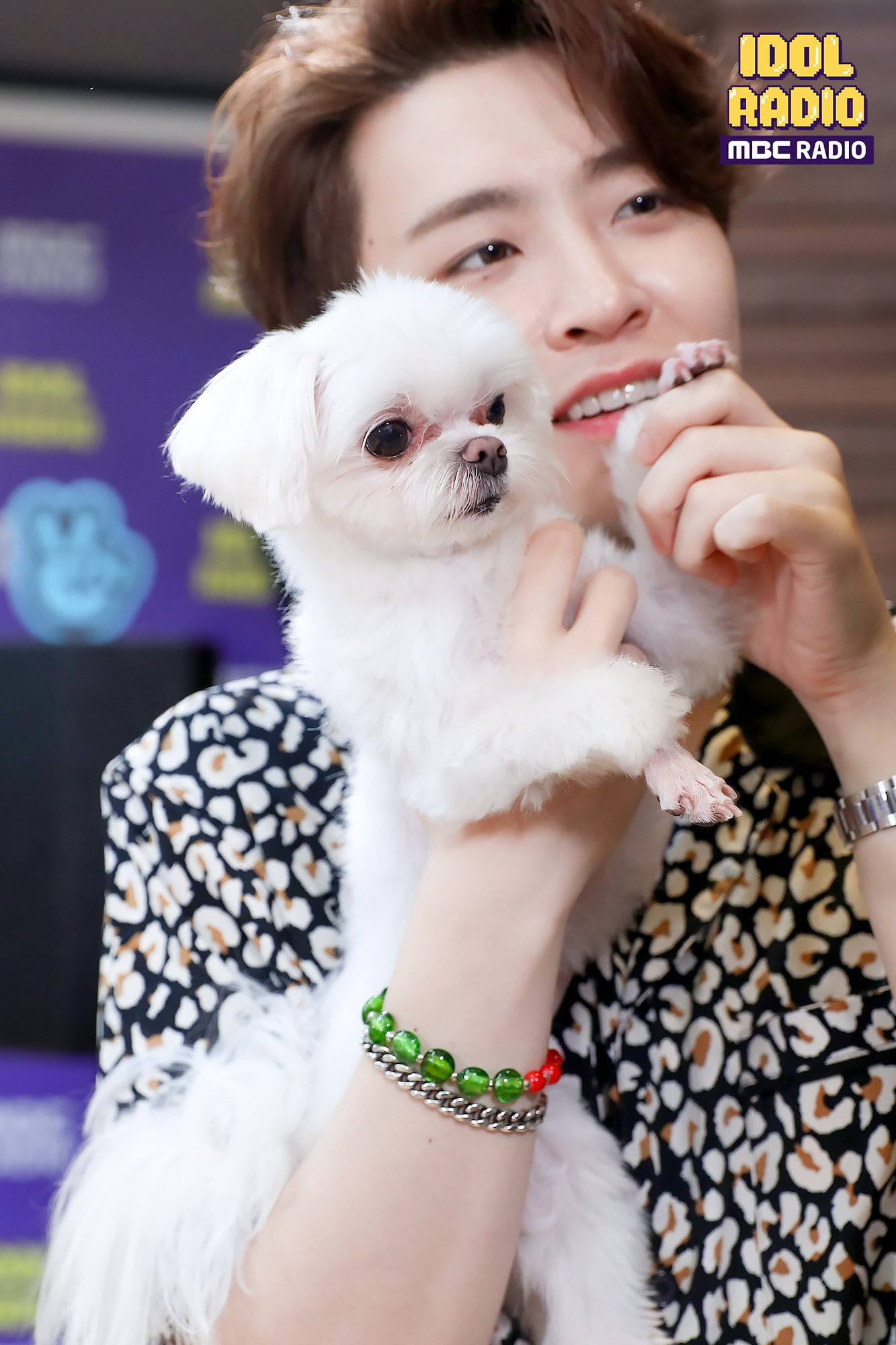 Youngjae-and-Coco-got7-43464777-1333-2000.jpg