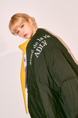 ADLV - Fall Winter 2020