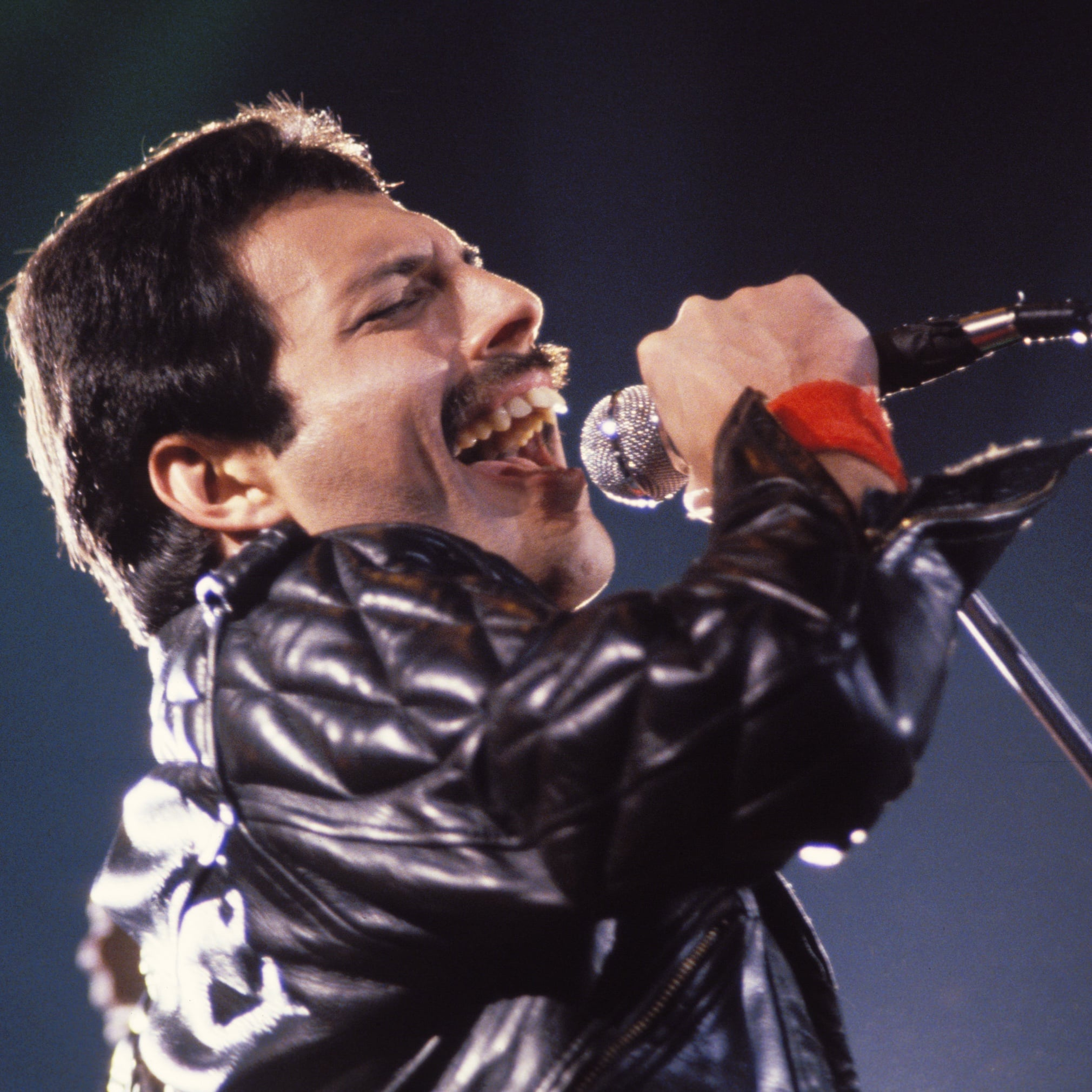 I was born to love Freddie
