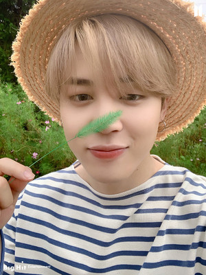 BTS 2021 SEASON'S GREETINGS | JIMIN