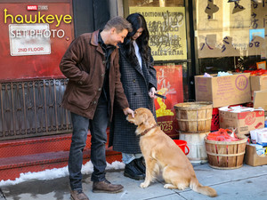 Hawkeye || Hailee Steinfeld, Jeremy Renner, and Lucky the 比萨, 比萨饼 Dog || 防弹少年团