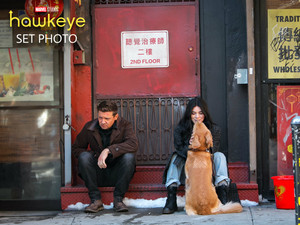 Hawkeye || Hailee Steinfeld, Jeremy Renner, and Lucky the pizza Dog || Bangtan Boys