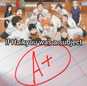 Petition to make Haihyuu a compulsory subject in school XD