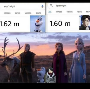 Levi's height and olaf's height (Omg XD)
