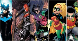 5 Different Robins