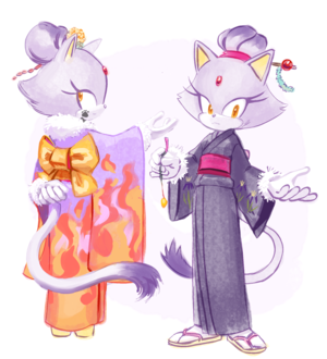 Blaze the cat in a Kimono